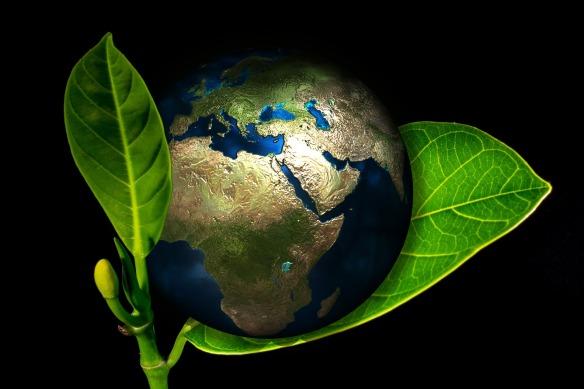 earth-405096_1920